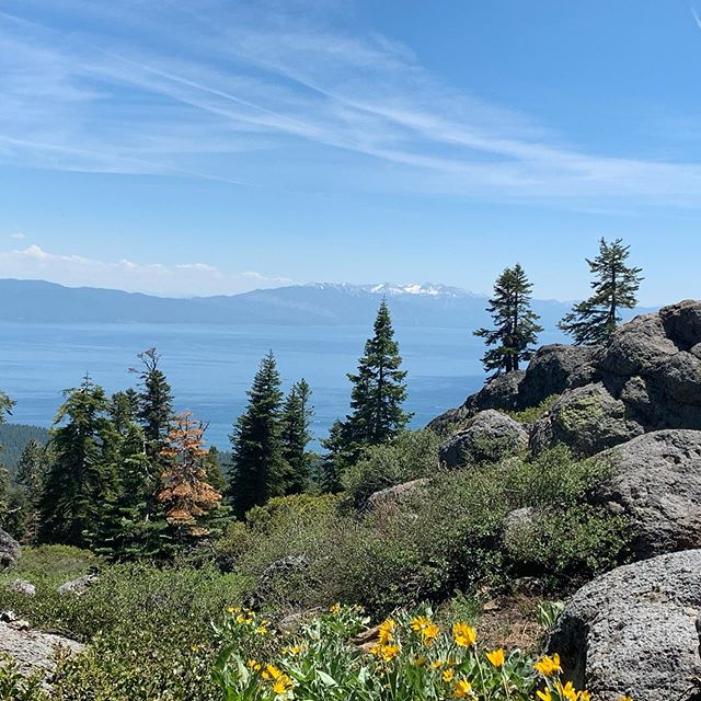 Great to have friends who are willing to let you take them on an adventure on two wheels high above Lake Tahoe 😬 #willpedalforviews #8000ft #laketahoe