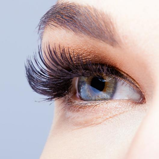 eyelashes.png