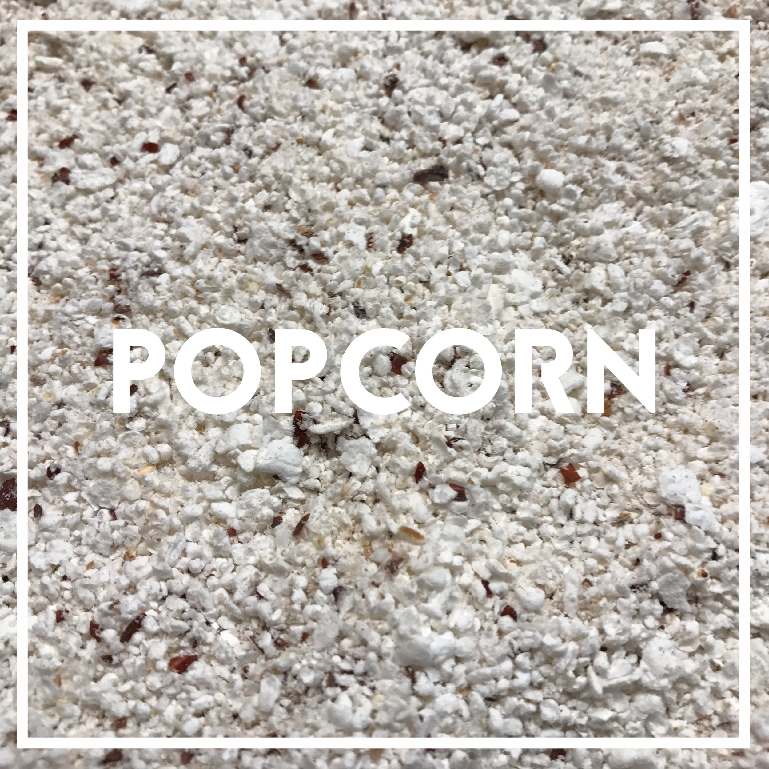 Our whole grain popcorn is a red varietal grown by Andrew and Karlie Bowman of  Pilot Knob farm , in Oneida IL. We air-pop and stone-mill it in small batches in-house.   Used in: White Knight   Popcorn was milled into flour during WWII, when wheat became scarce. Apart from the humble kitchen blender, the practice has since been lost. We had to Rube-Goldberg together three different machines to bring you stone-ground popcorn flour. It lends a strikingly light and airy quality to pancakes. Its flavor is unmistakable and distinct, especially when buttered.