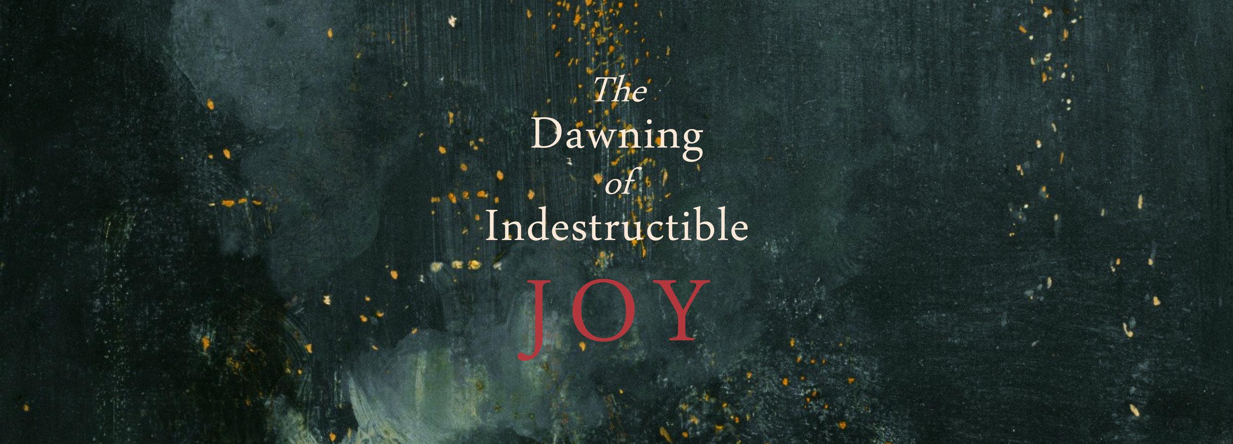 IndestructibleJoy_Banner.jpg