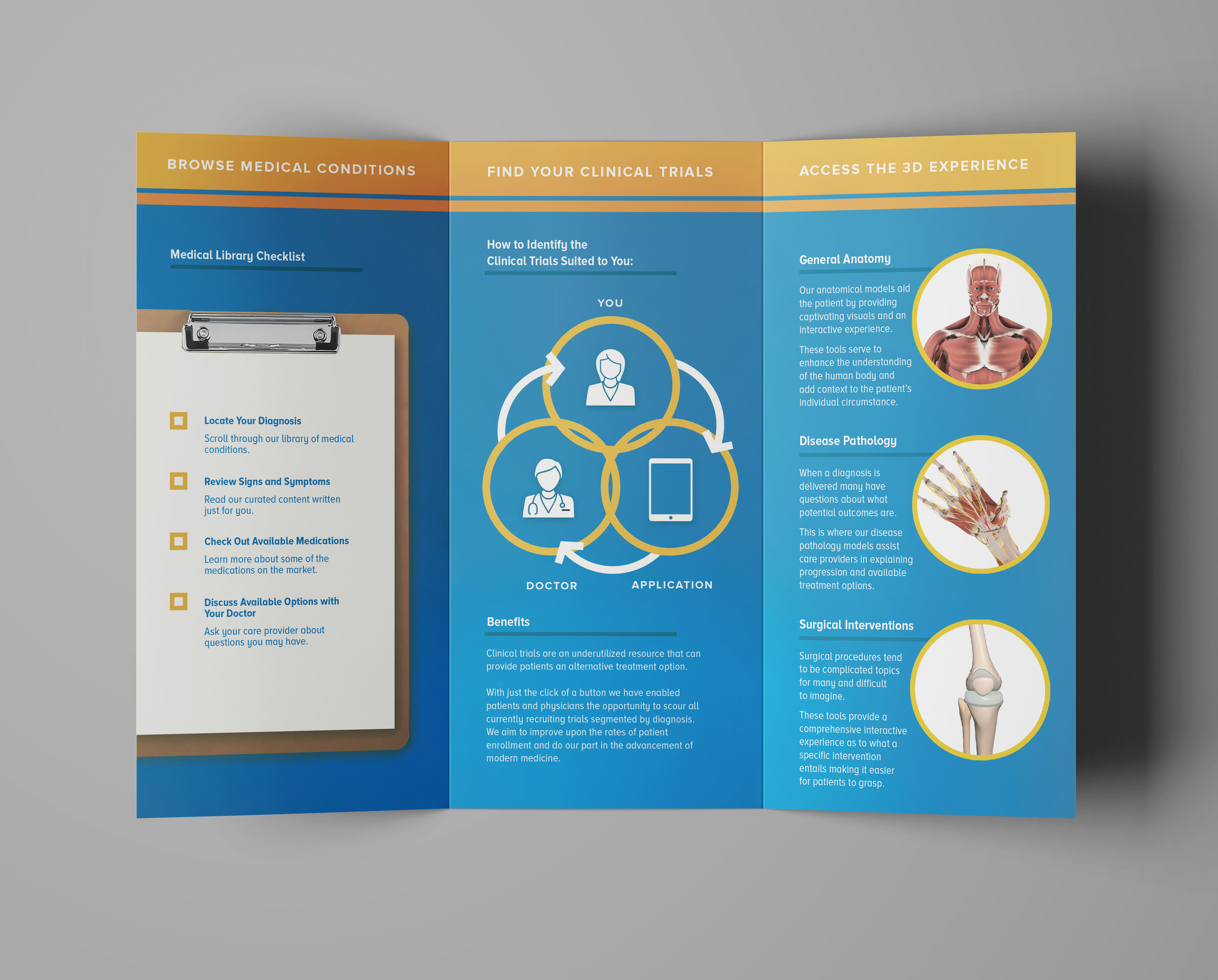 Precision One Health Pamphlet Inside