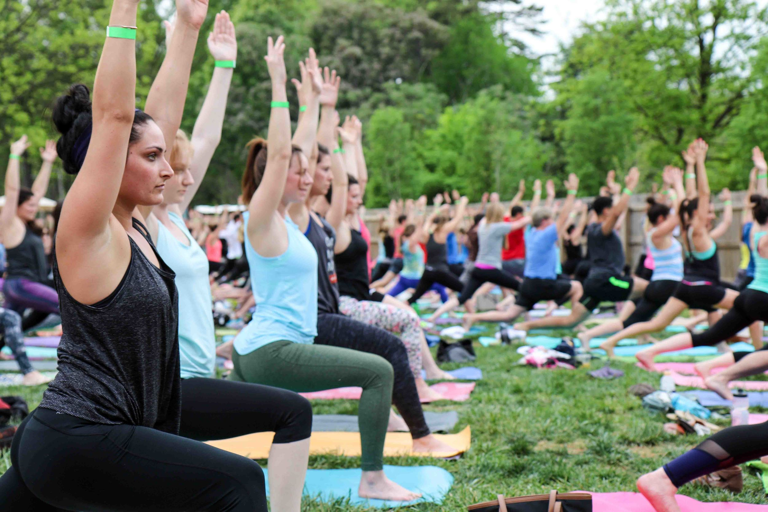 Charlotte-Yoga-On-Tap-9.JPG