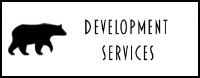 Development, development service, development services