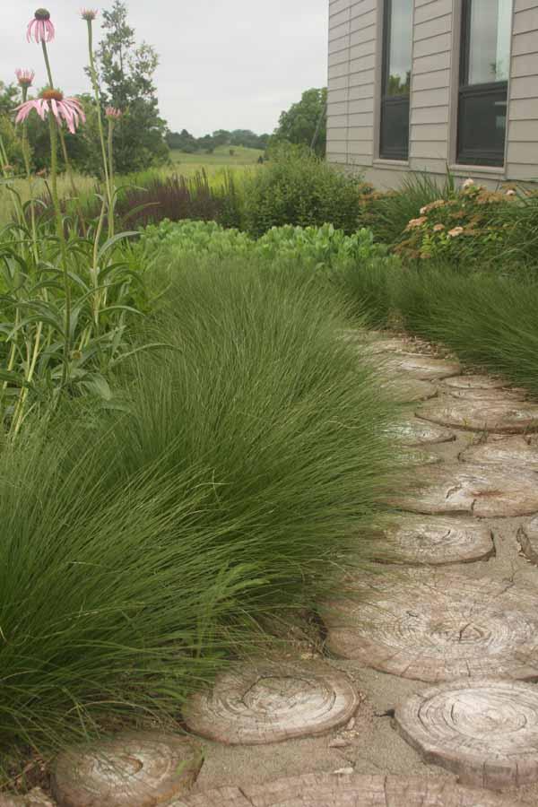 wood garden path-2