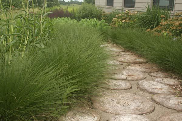 wood garden path-3