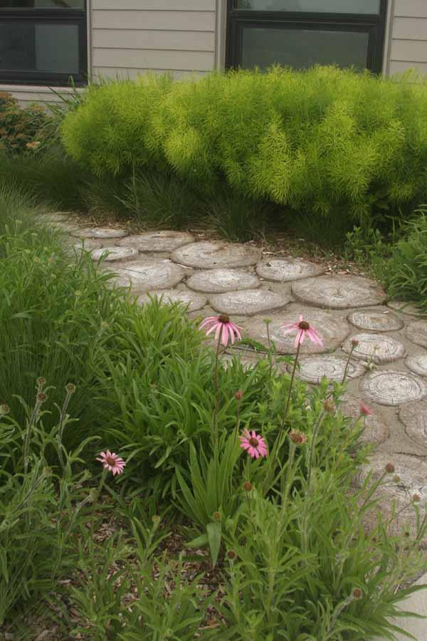 wood garden path-5