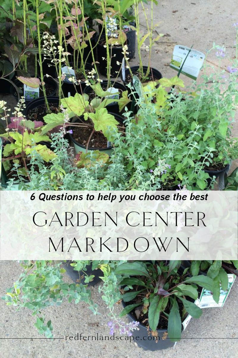 6 tips to help you choose the best garden center markdown plant | Red Fern Landscape Design | Des Moines, Iowa | garden + landscape designs for great outdoor spaces