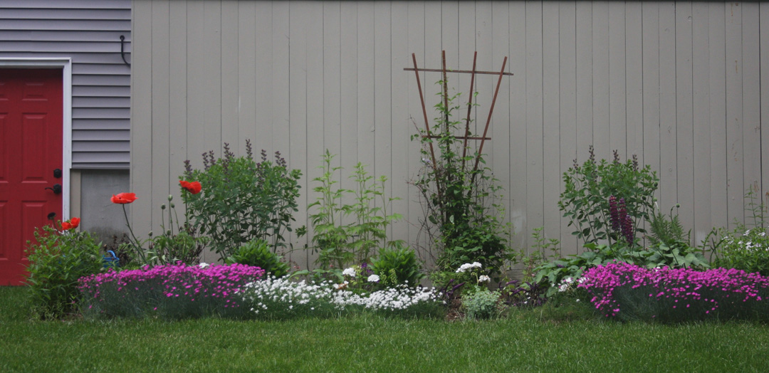 RFLD Colorful backyard web 9.jpg