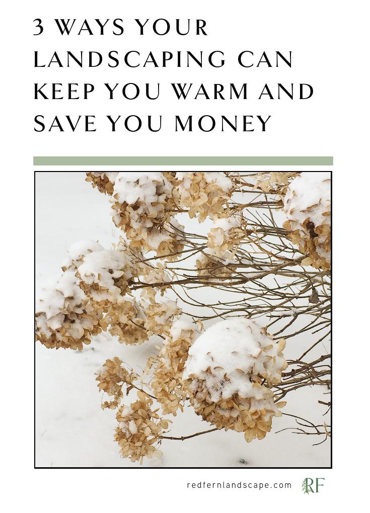 windbreak-midwest-winter-landscaping-energy-efficiency