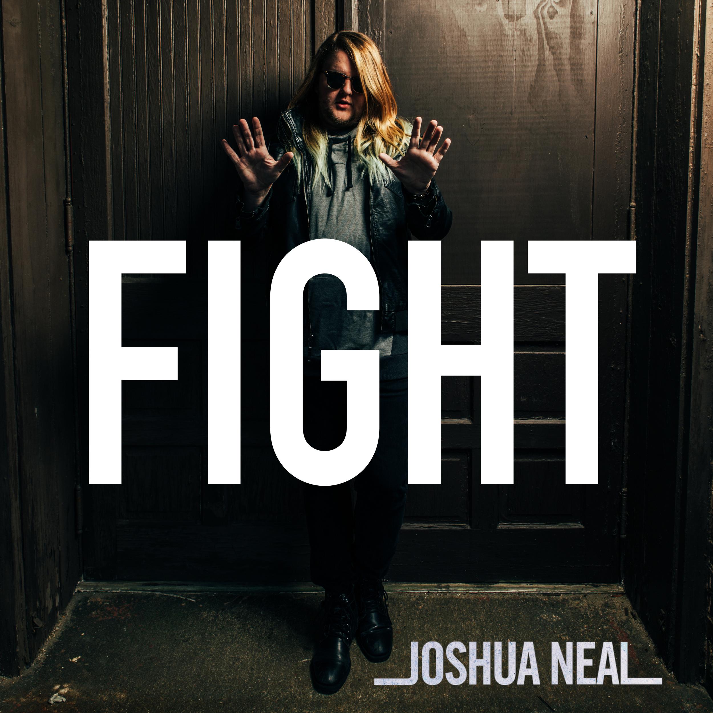Fight Cover art.jpg
