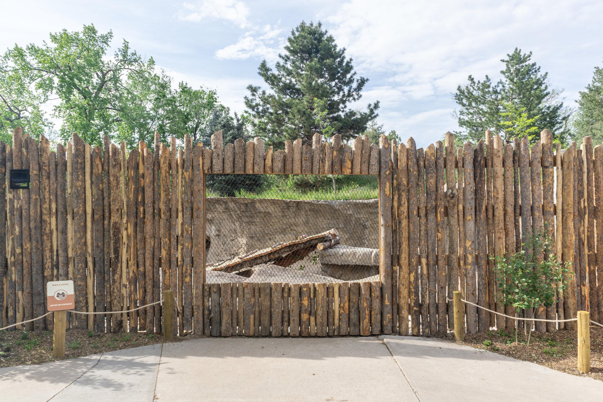 4338.00 - Denver Zoo - Grizzly Bears - 47.jpg