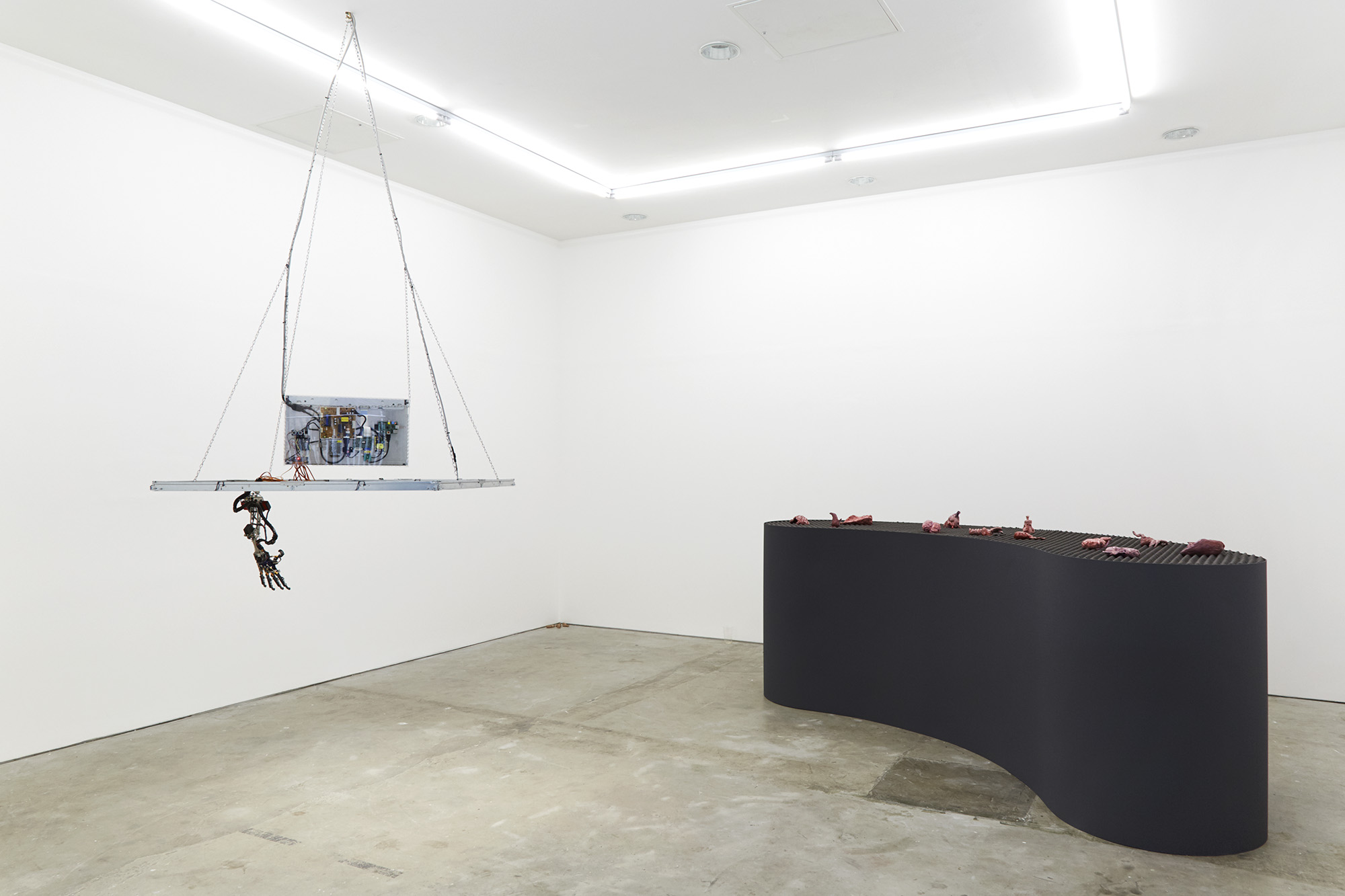 Installation view   Photography by Corey Bartle-Sanderson