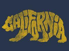 Cal bears.jpg
