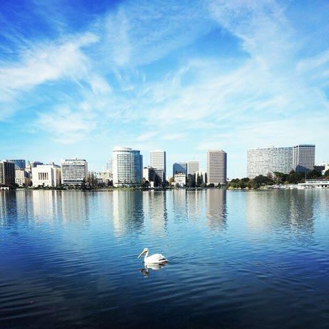 Lake Merritt Oakland.jpg
