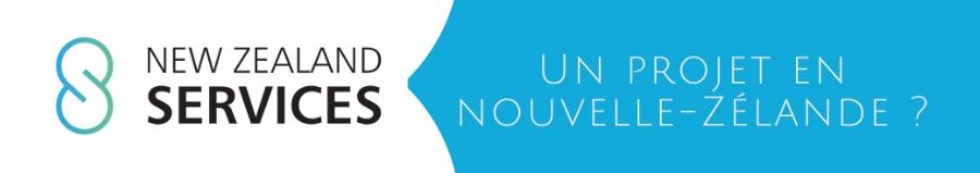 chaine-you-tube-nzs-immobilier