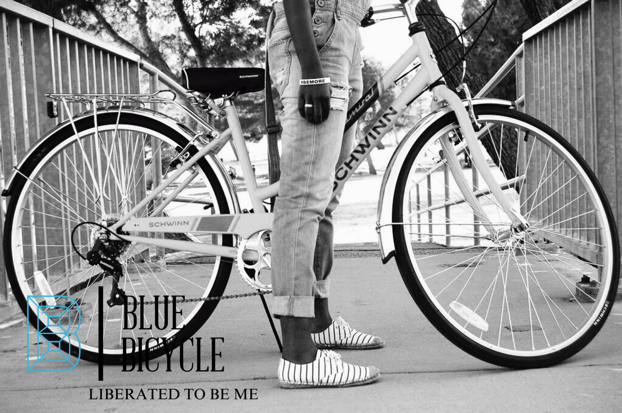Blue Bicycle Blog Contact