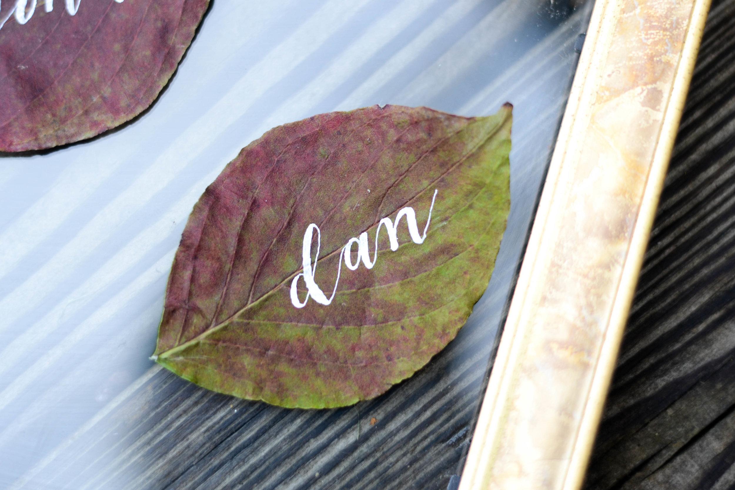 leaf_calligraphy.jpg