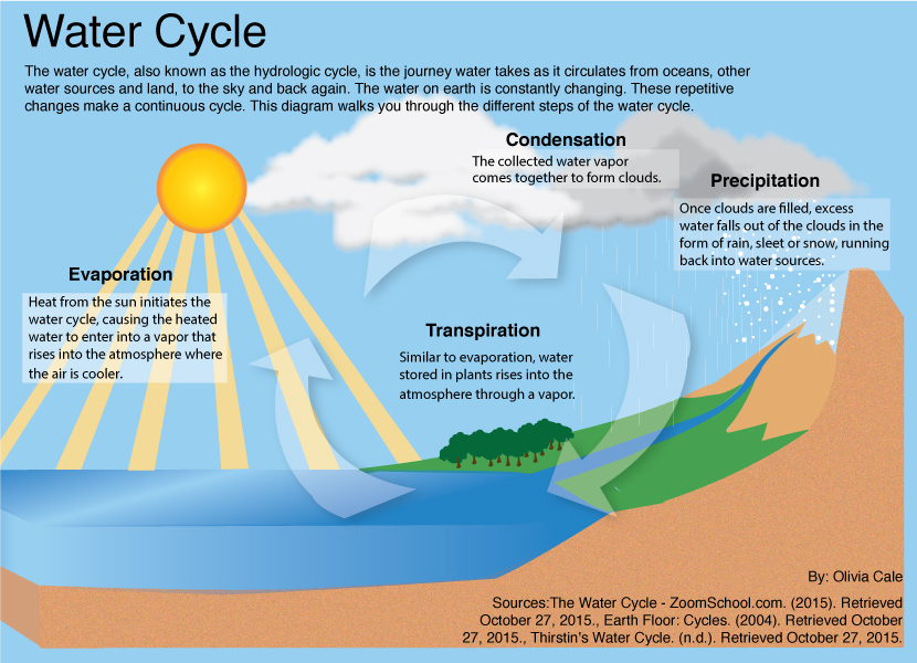 The water cycle is an informational graphic that has been illustrated several times. After finding a graphic that I found well done, I wanted to take a stab at recreating it. I used Illustrator to draw this.