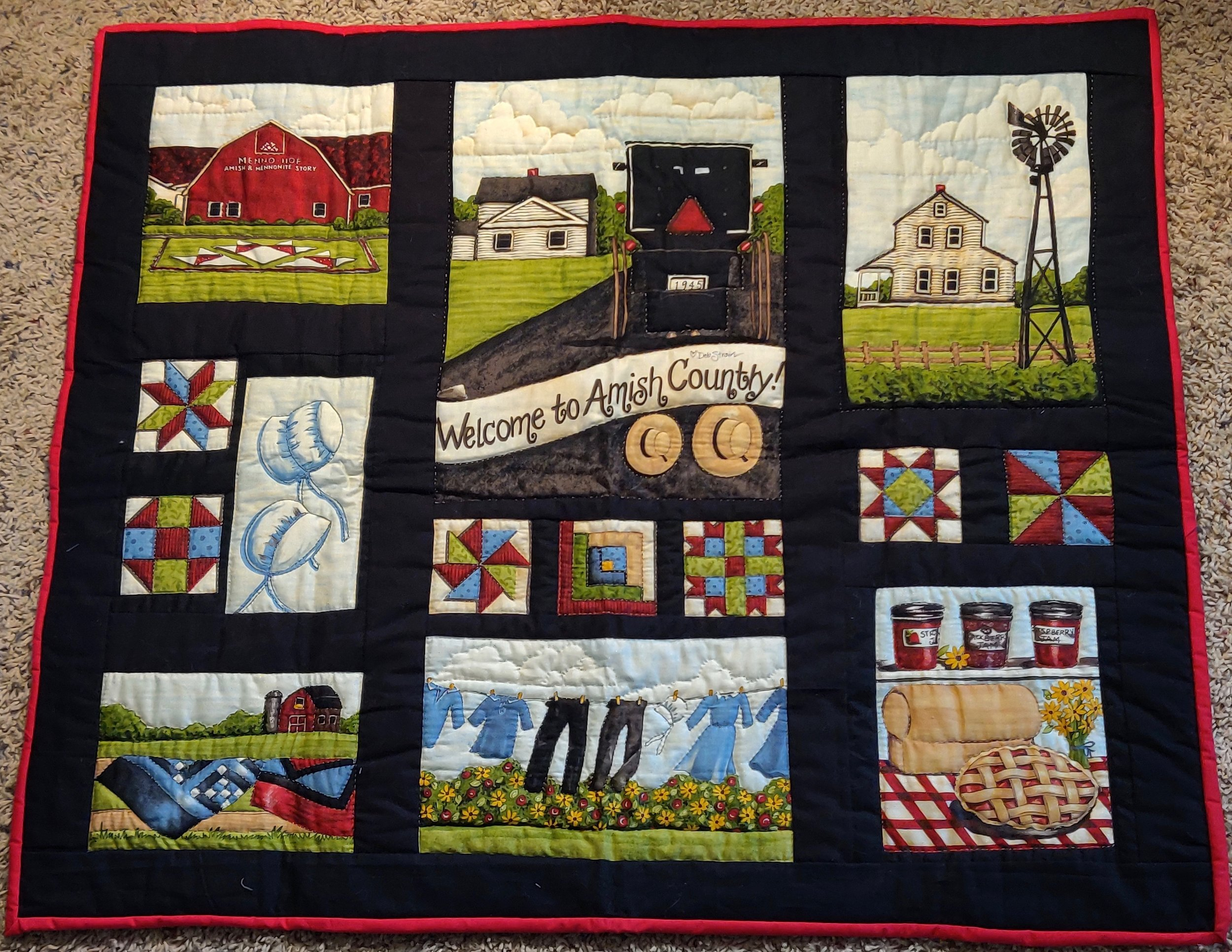 "Amish Country, Pieced, Hand Quilted, donated by Sharon Swartzendruber, 36 wide, 31"" long"