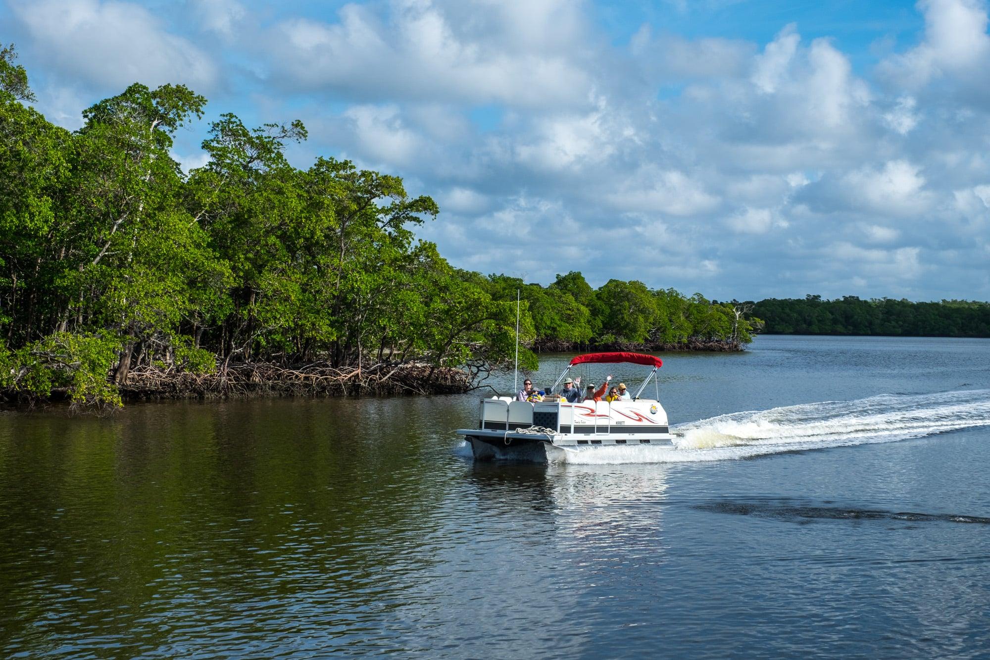 Visitors explore the Everglades.