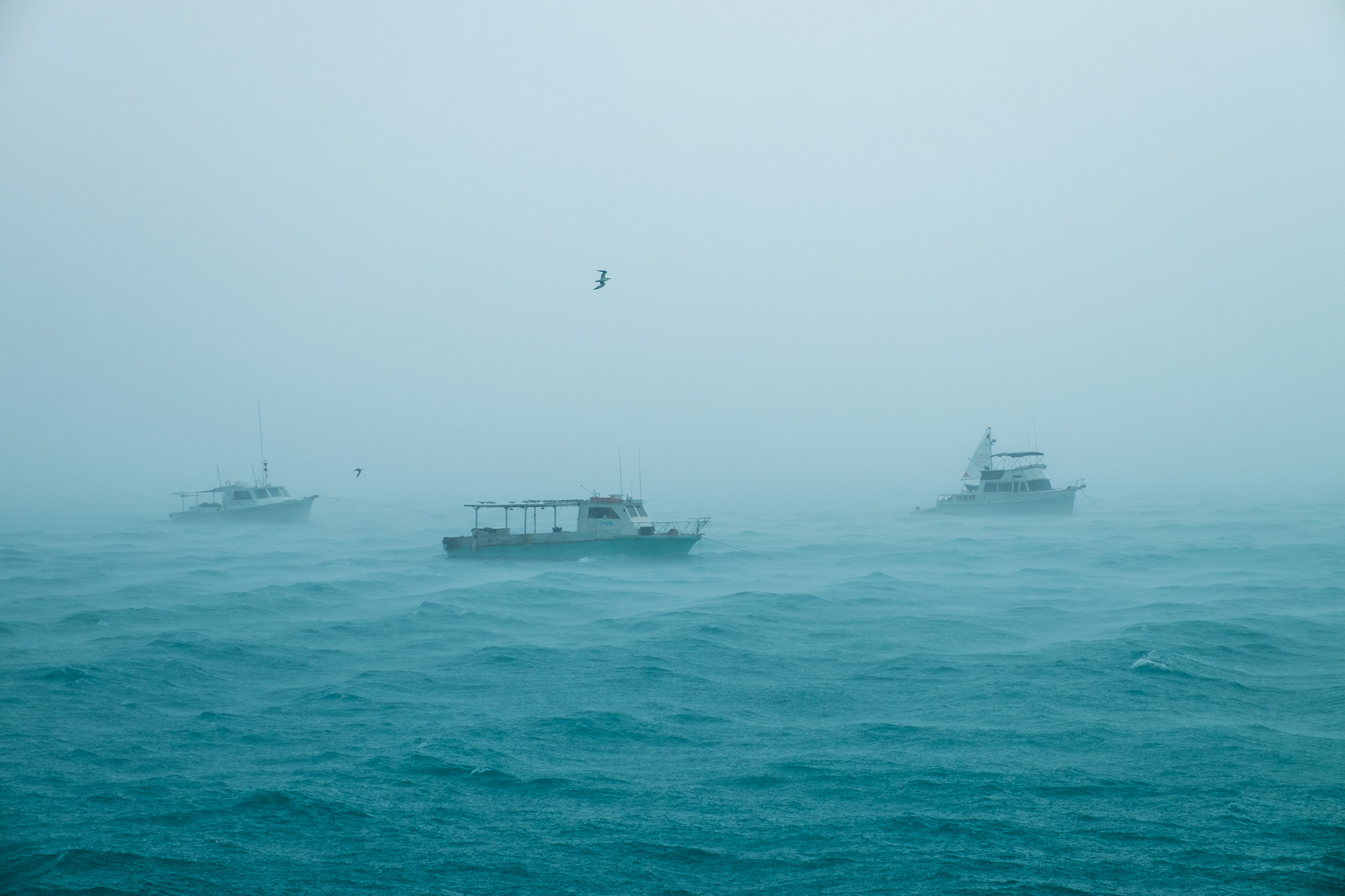 Boats anchored on the harbor for safety in the driving winds and rain.