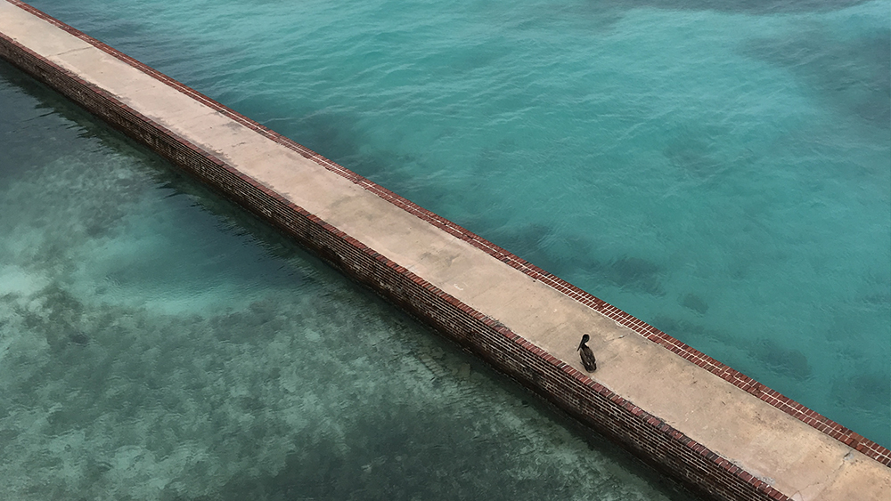 The moat wall at Fort Jefferson on Garden Key at Dry Tortugas National Park, Florida. Credit: Jonathan Irish