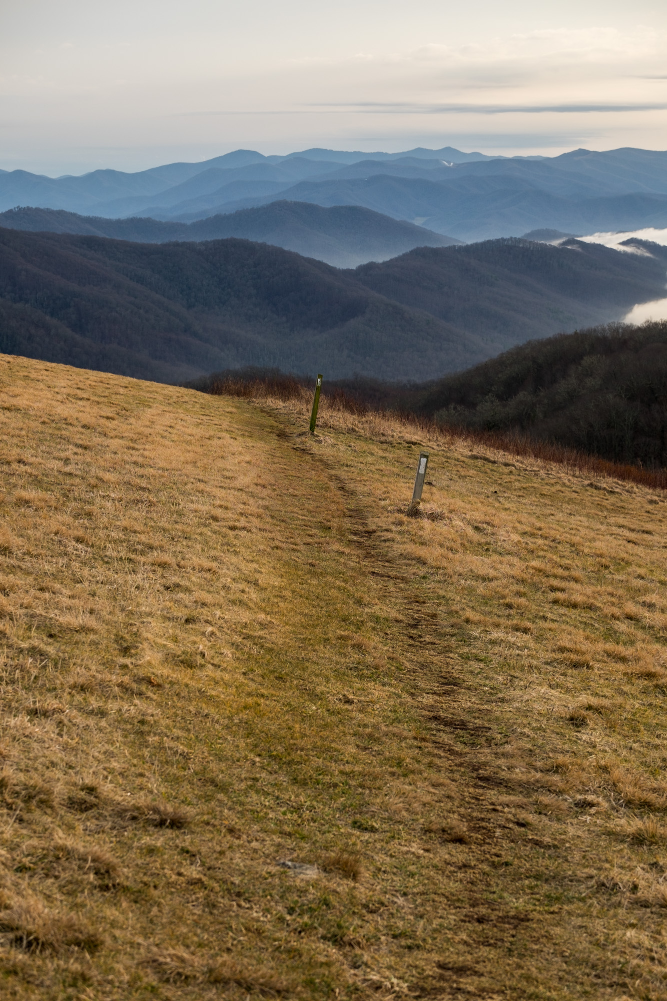 On top of Max Patch we found the Appalachian Trail.