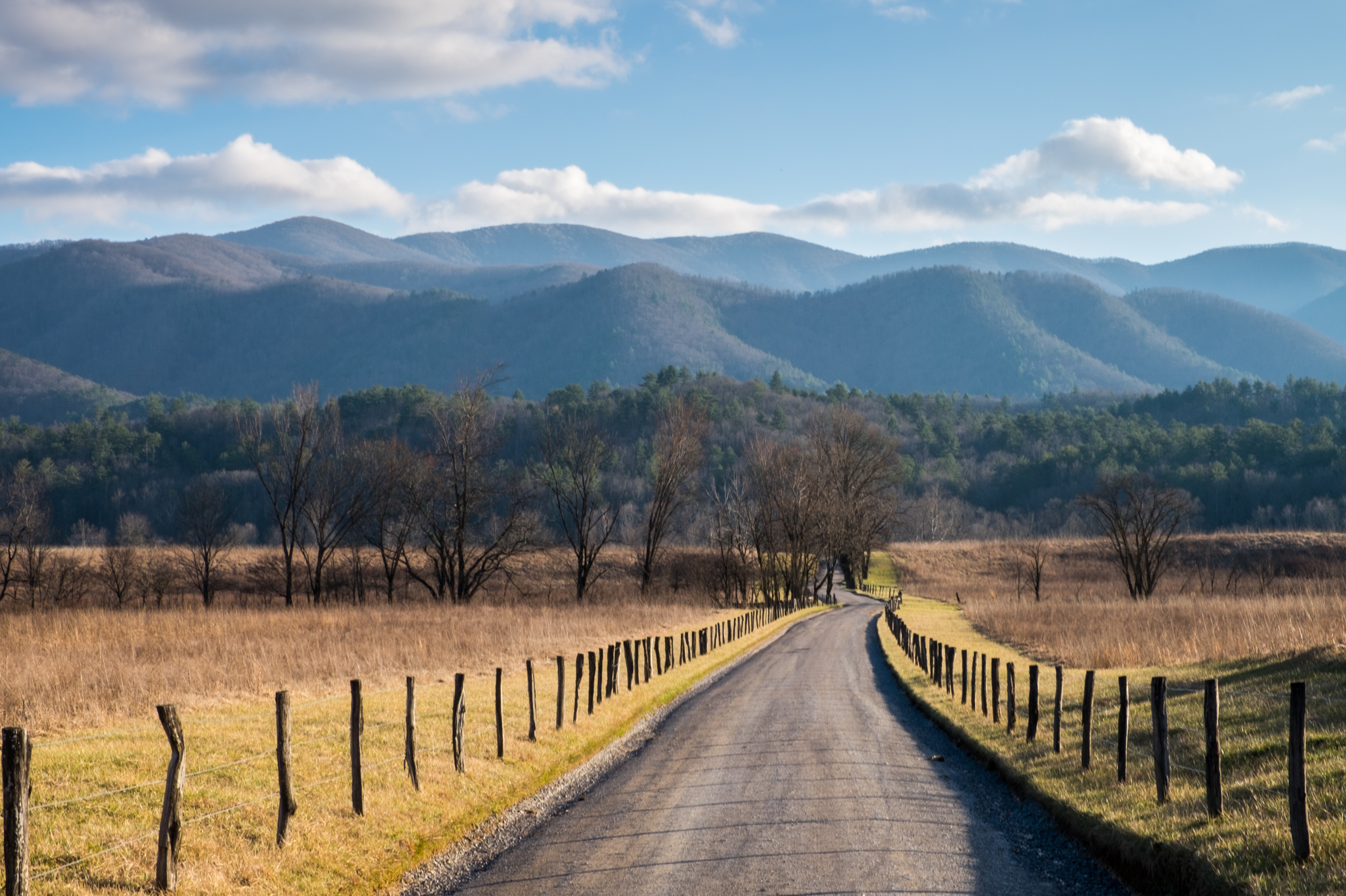 We had some beautiful views in Cade's Cove.