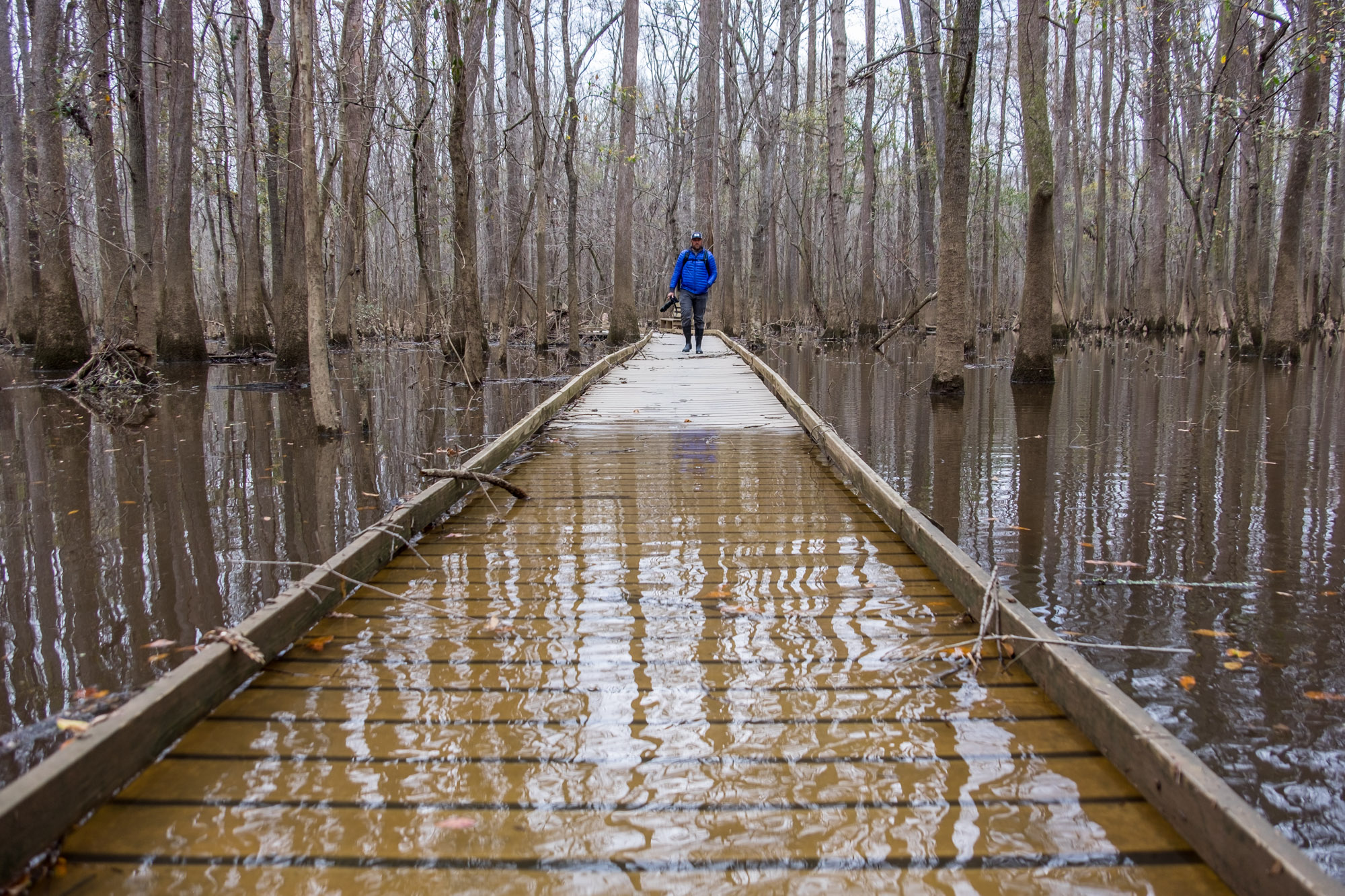 The boardwalk was about half flooded, but we had good wading boots to continue on.
