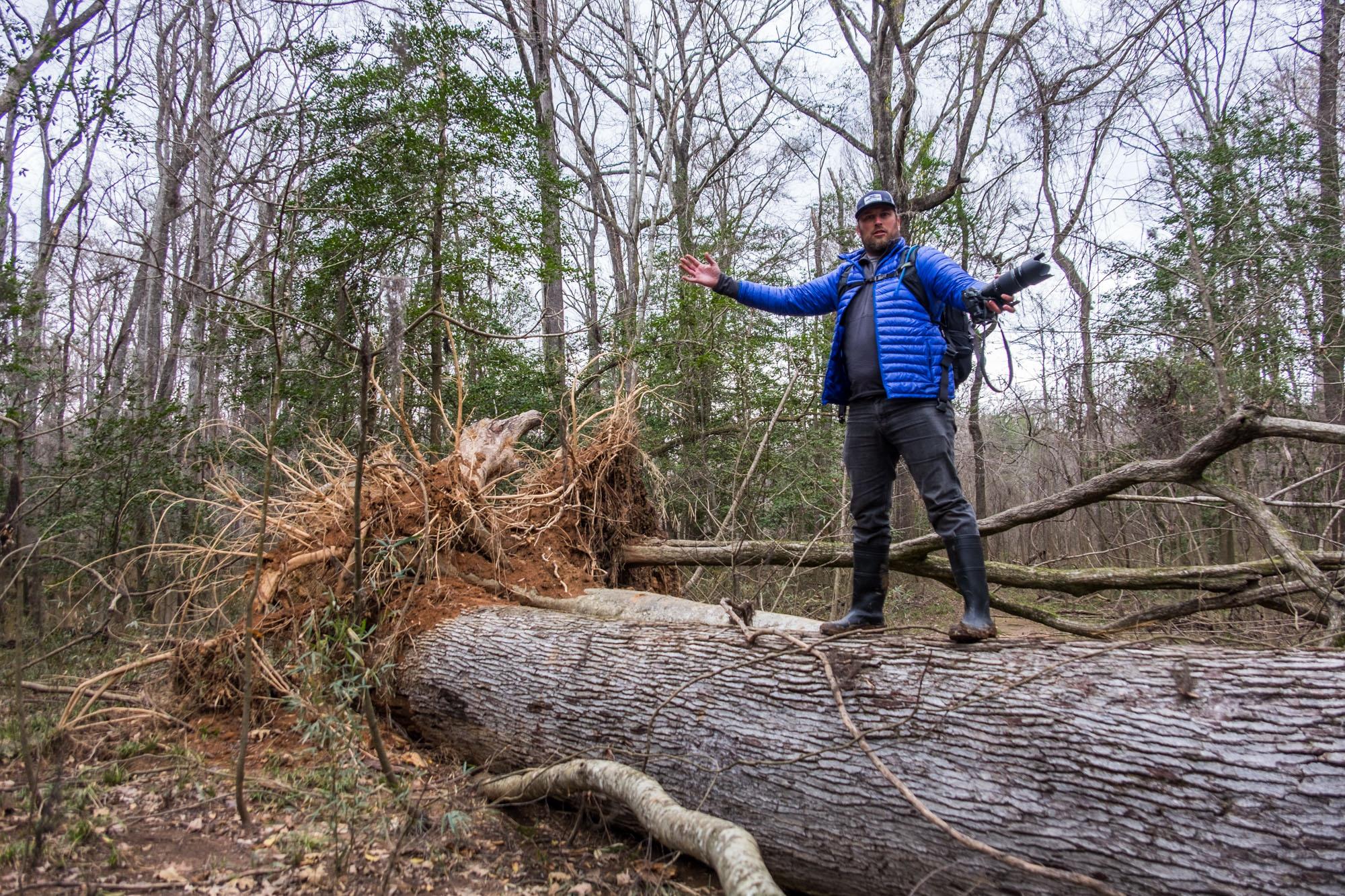 JI climbed a tree.