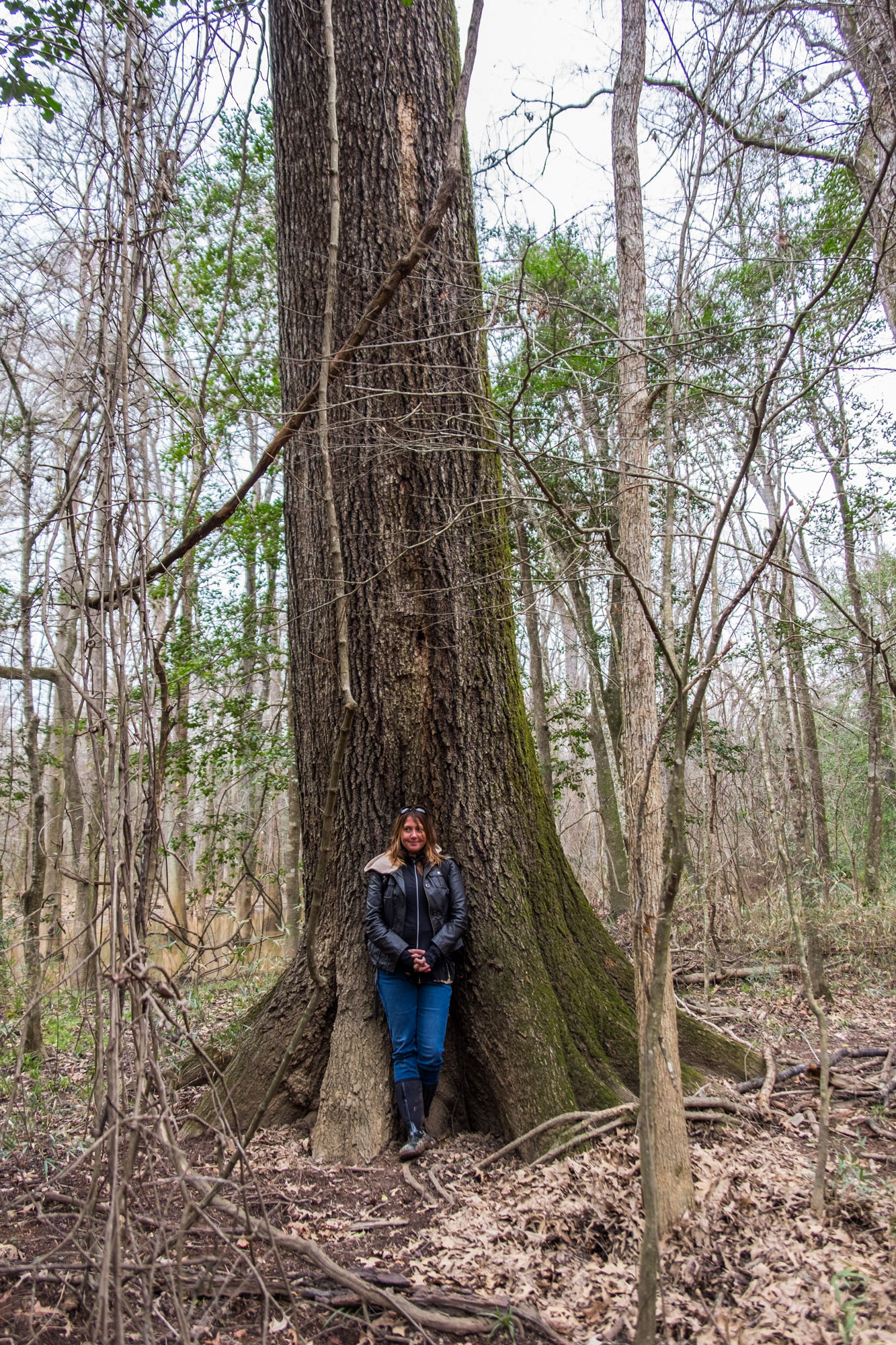 Stef poses next to a big old tree.