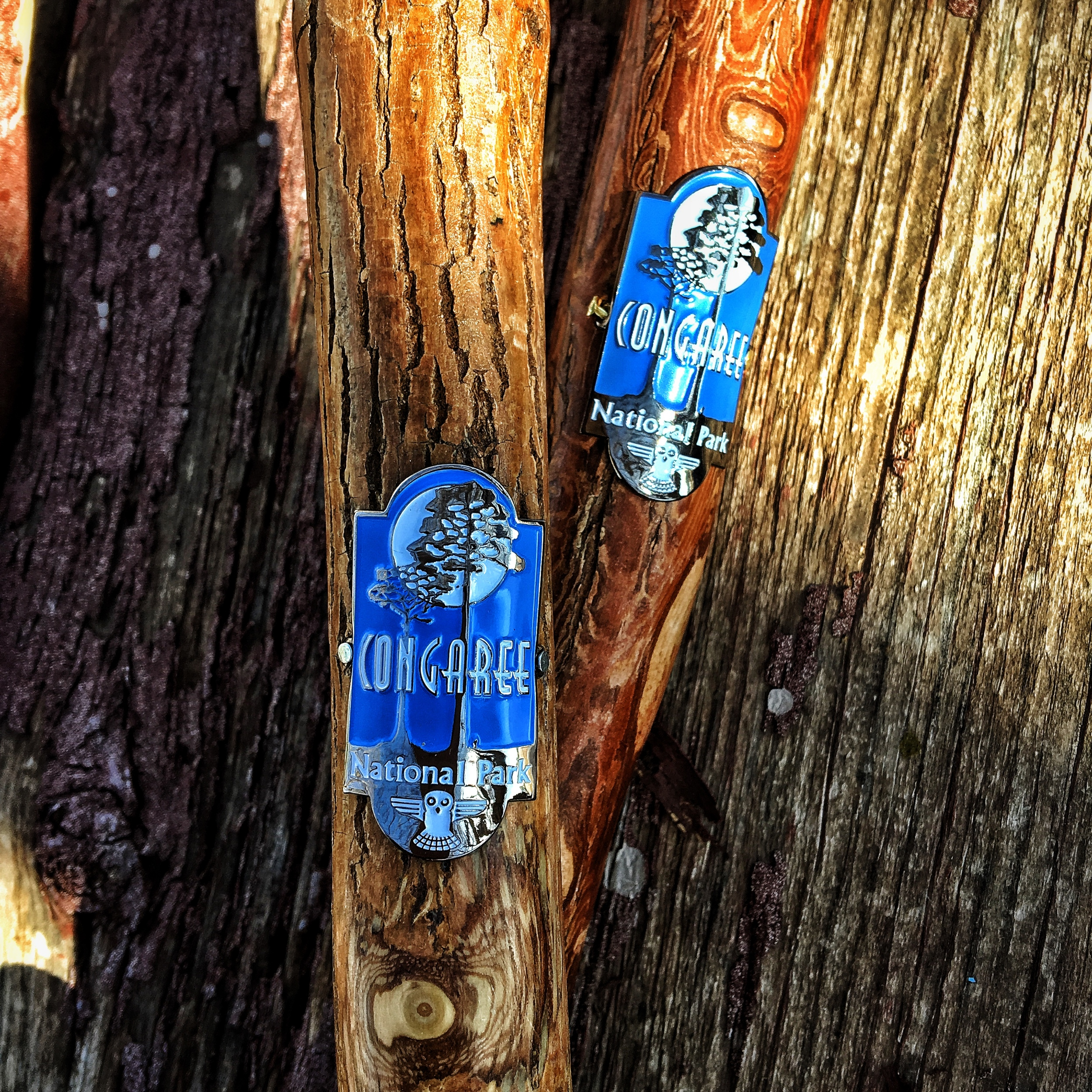 Hiking stick medallions from Congaree National Park