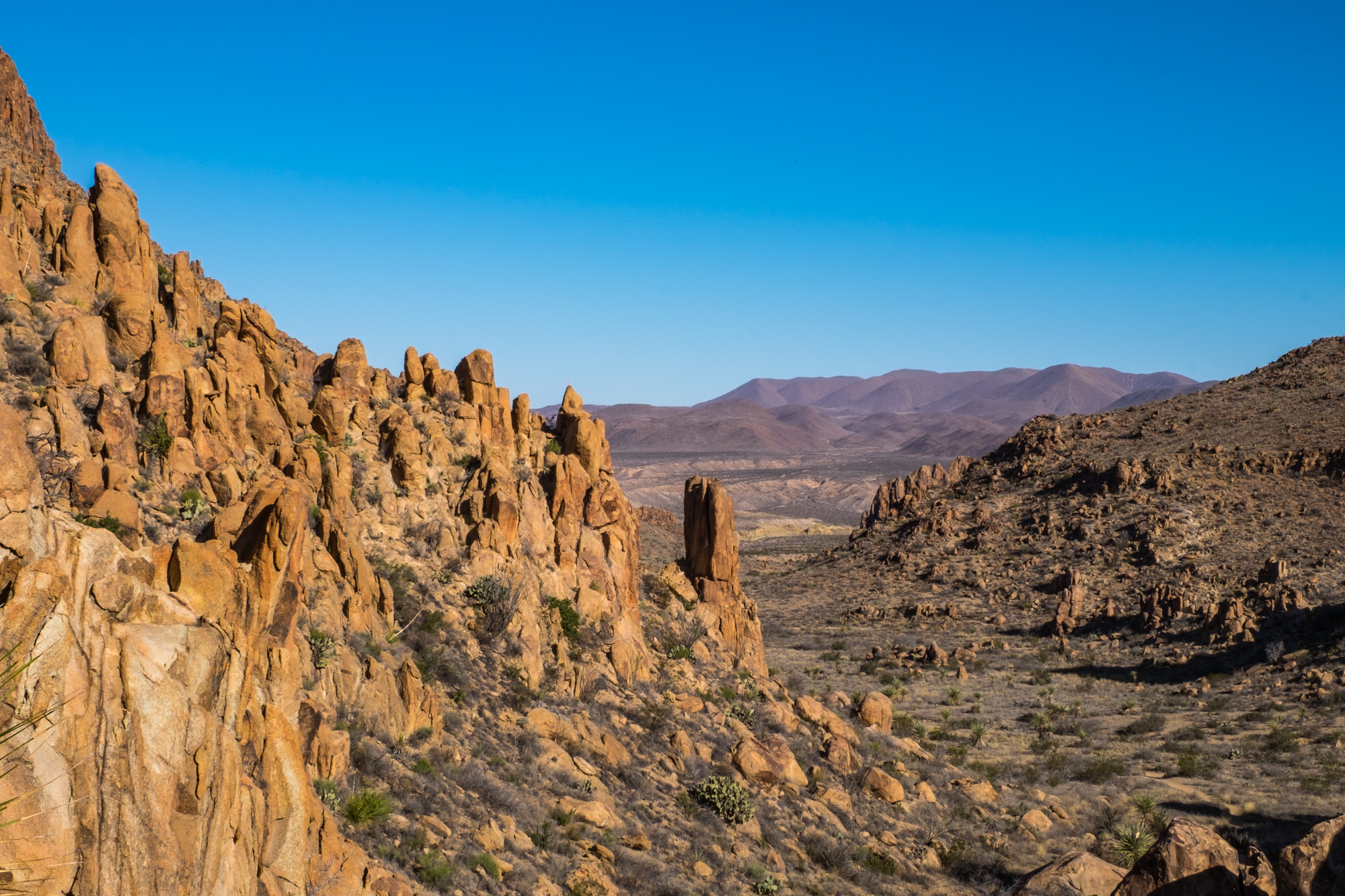 The beautiful valley along the Grapevine Hills Road.