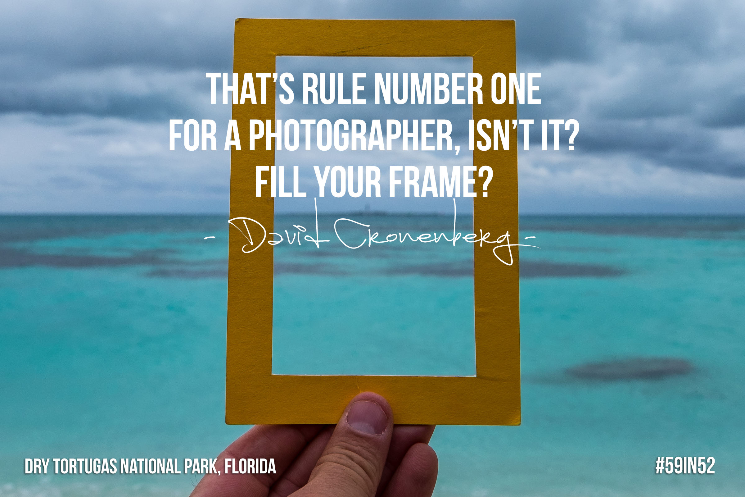 """That's rule number one for a photographer  , isn't it? Fill your frame?"" - David Cronenberg"