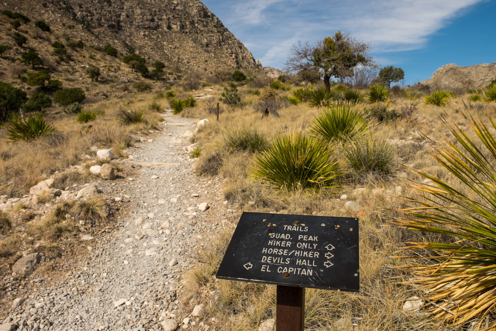 Trailhead signs lead the way.