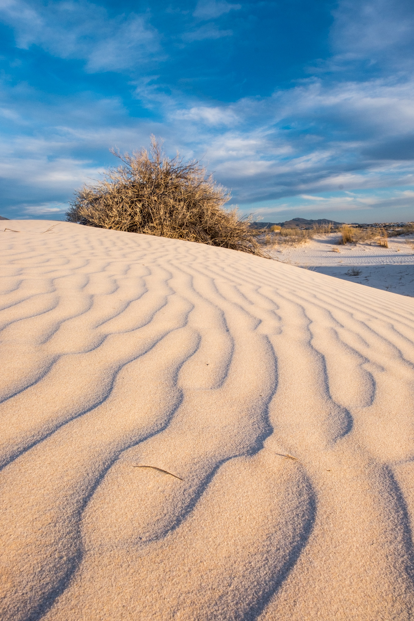 Textures at the Salt Basin Sand Dunes.