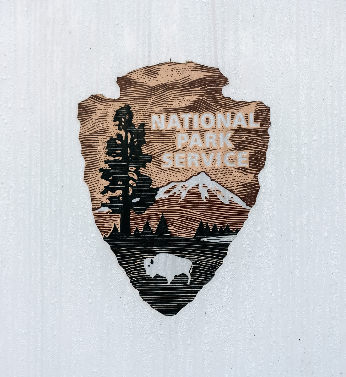 National Park Service arrowhead insignia at Great Smoky Mountains National Park in Virginia.