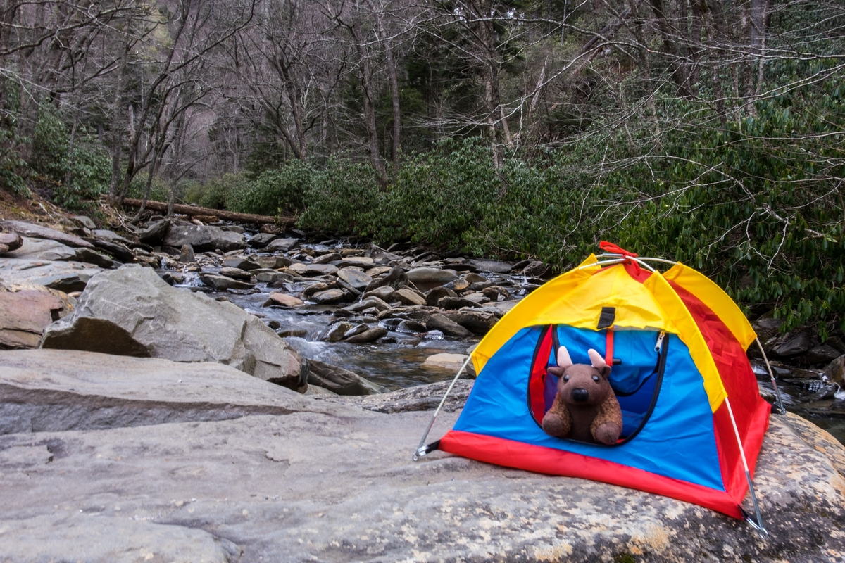 20160206-SP-Great Smoky Mountains-327-_DSF1383.jpg