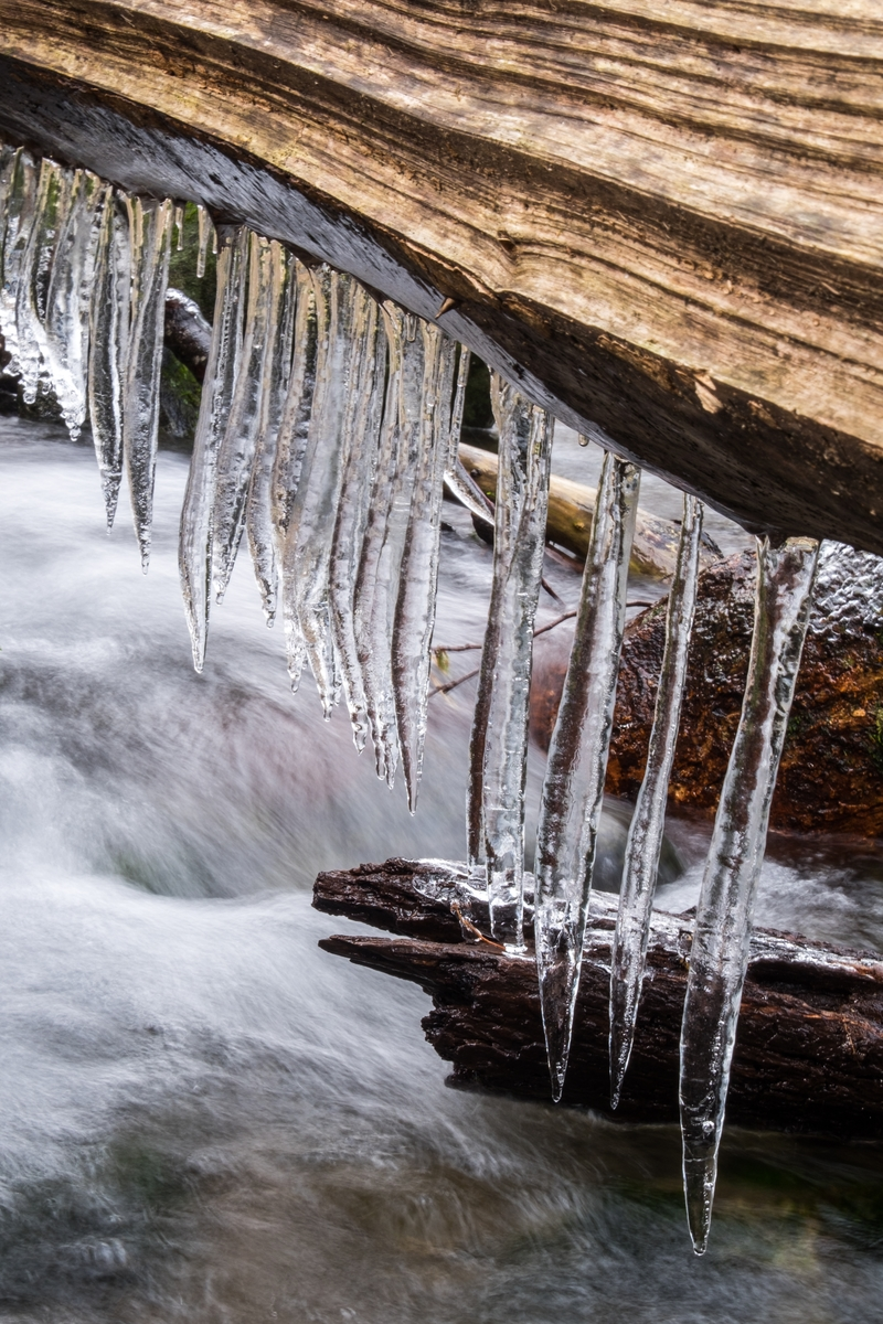 Icicles at the Great Smoky Mountains in North Carolina and Tennessee.