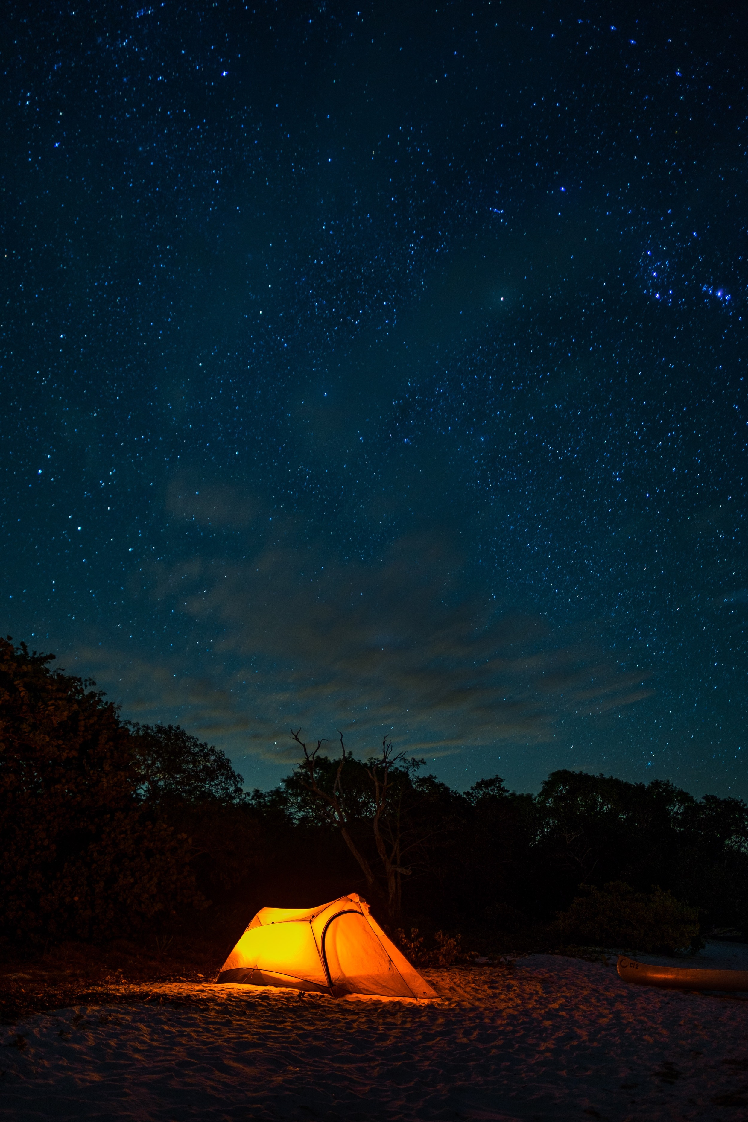 A starry night in Everglades National Park in Florida.