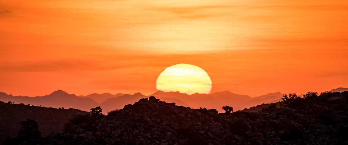 Sunrise in Joshua Tree National Park in California.