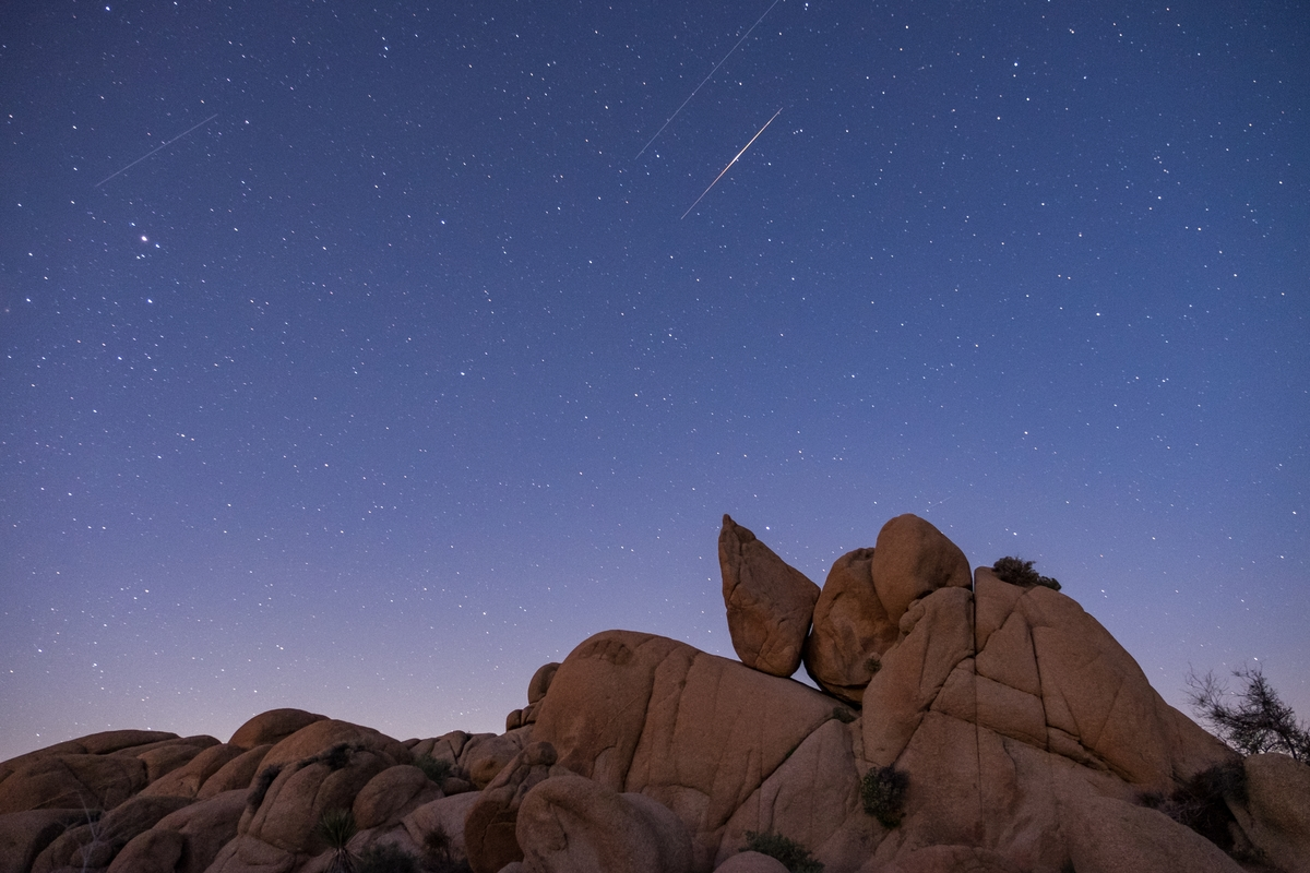 A starry night in Joshua Tree National Park in California.
