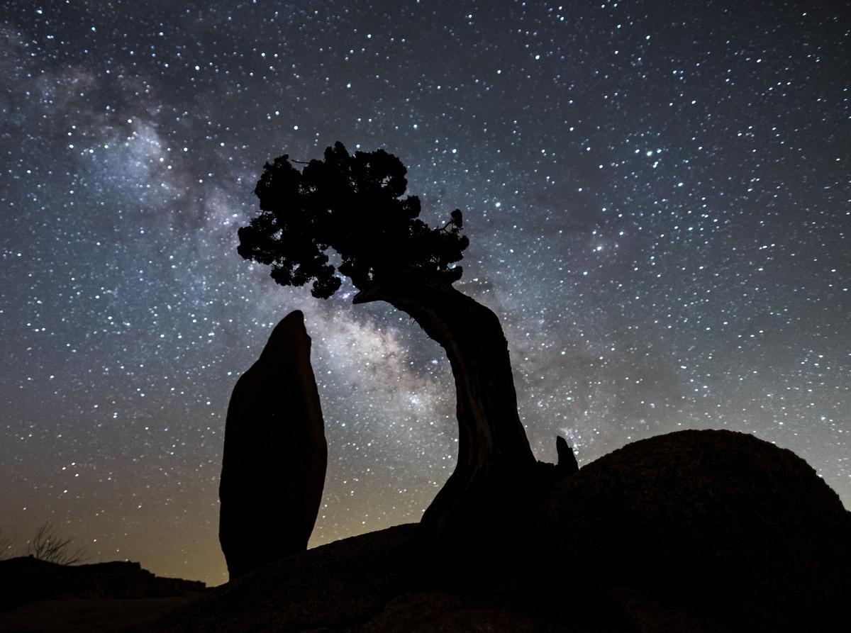 The Milky Way galaxy in Joshua Tree National Park in California.