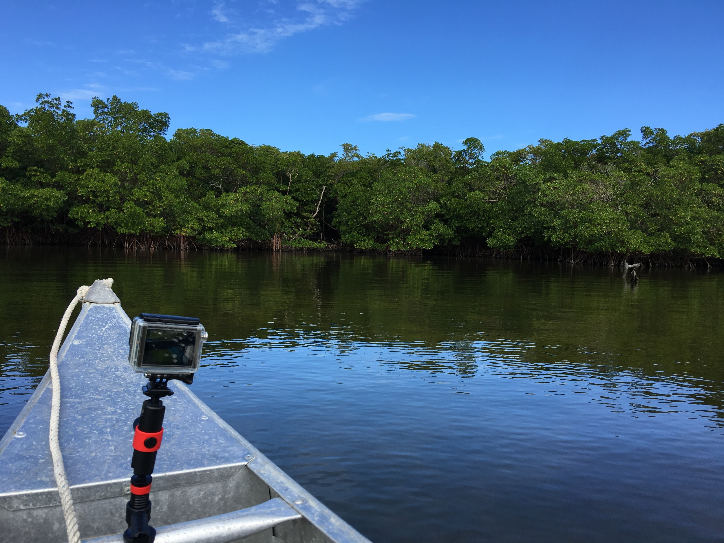 Ctaching some GoPro footage on the waterways of Everglades National Park in Florida. Park #1!