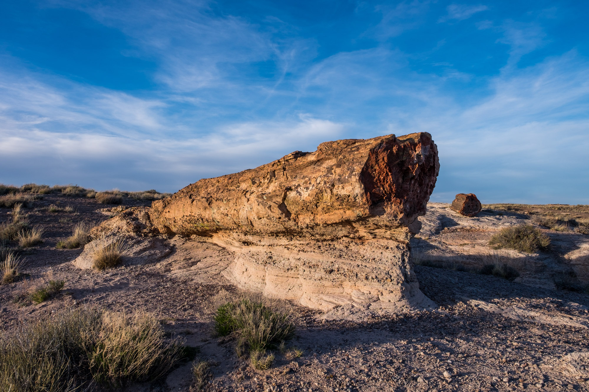 On the way to Blue Mesa you will find interesting petrified wood, suspended by sand and erosion.