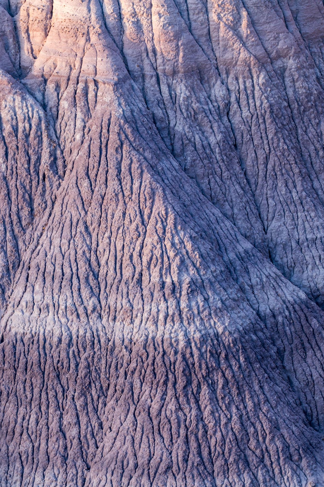 Petrified Forest National Park - 014.jpg