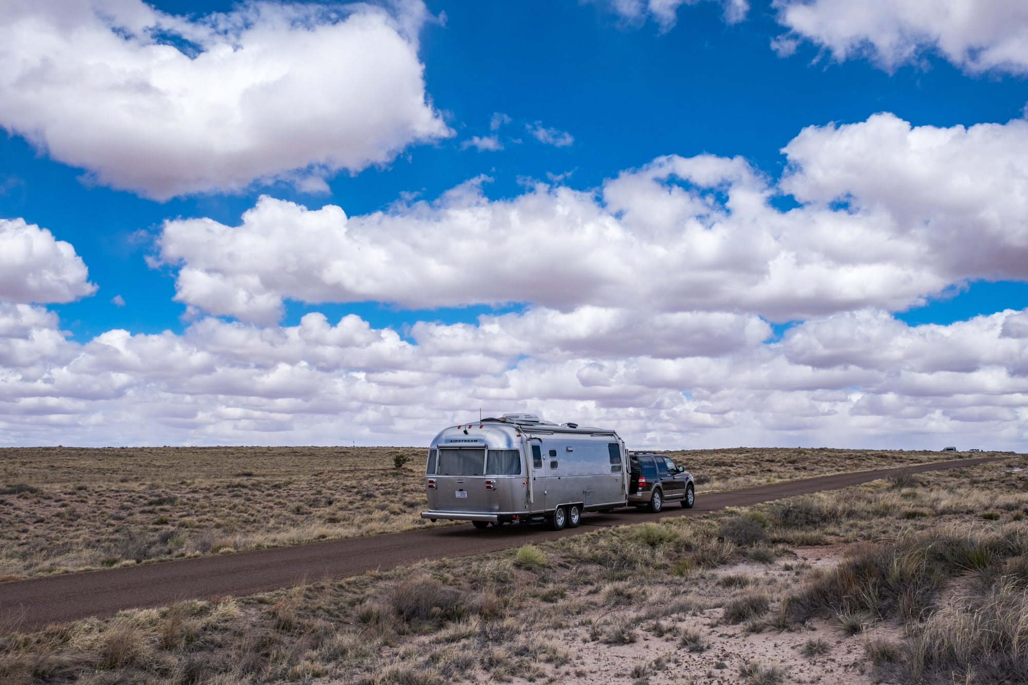 Wally liked the big sky views of Petrified Forest.