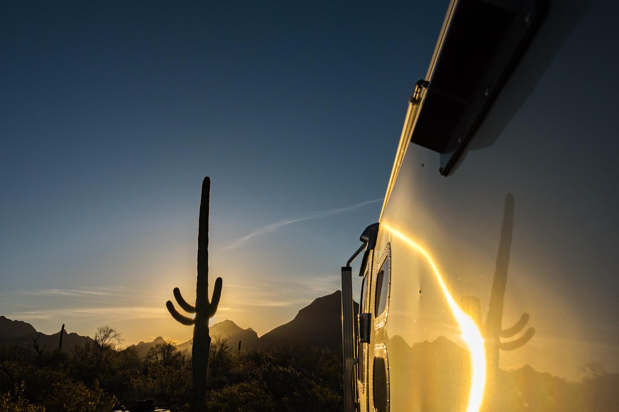 Saguaro cactus silhouettes at sunset in Saguaro National Park in Arizona.