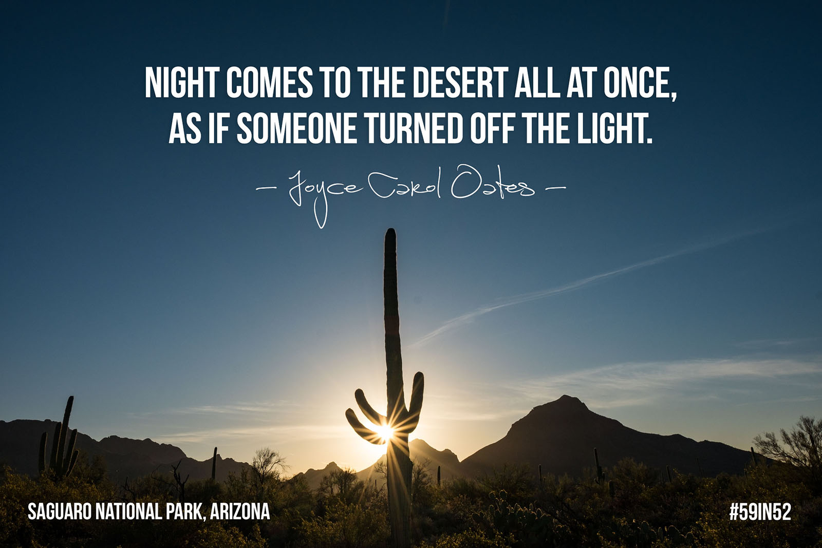 """Night comes to the desert all at once, as if someone turned off the lights."" - Joyce Carol Oates"