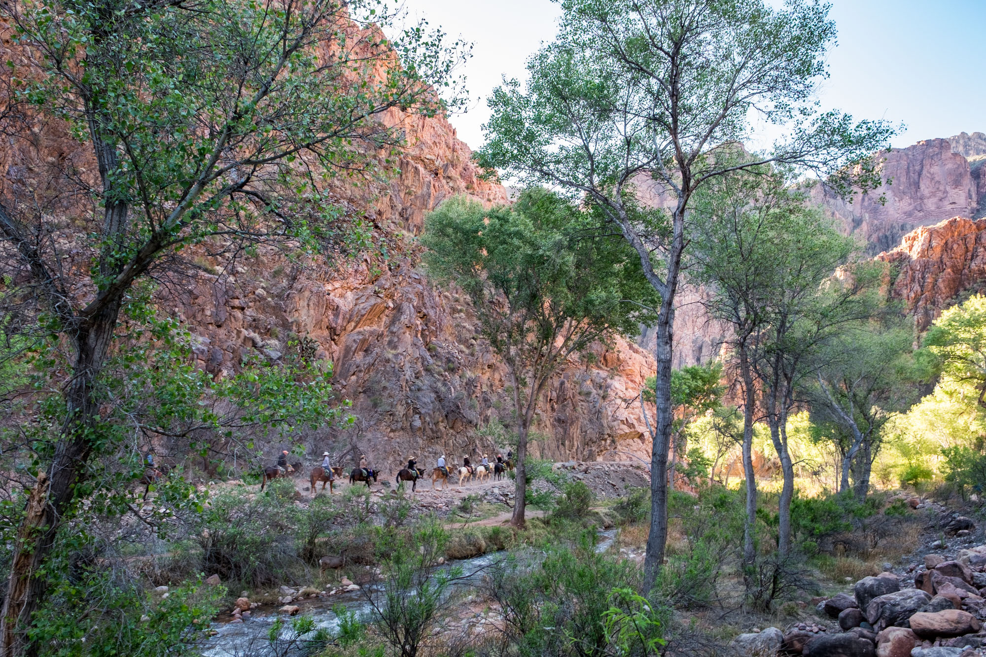 We had an early start the next morning to hike the 9.5 miles out along the Bright Angel Trail.